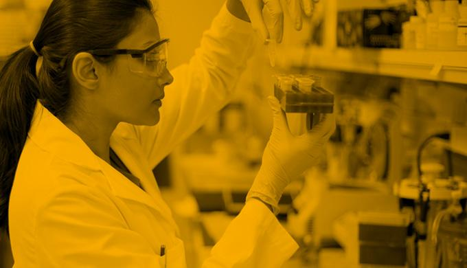 A woman works in a lab